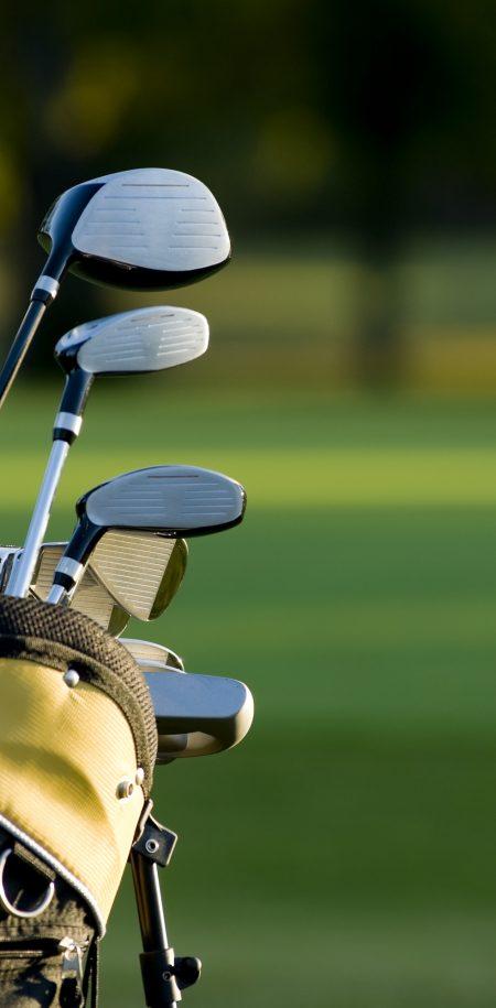 Golflaukku