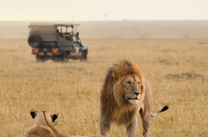Etelä-Afrikka Rovos Rail safari