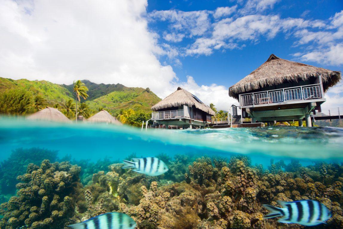 Tahiti Moorea