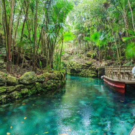 Meksiko Cancun viidakko