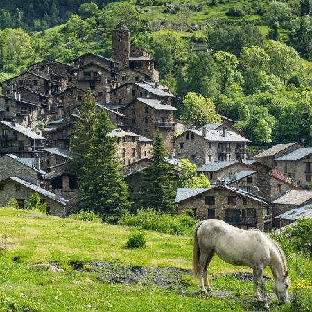 Andorra hevonen