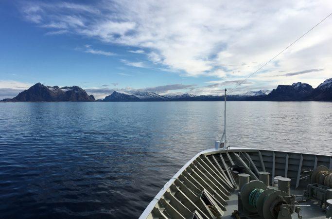 Risteily Hurtigruten laivalla