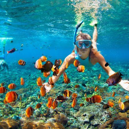 Thaimaa Krabi sukellus