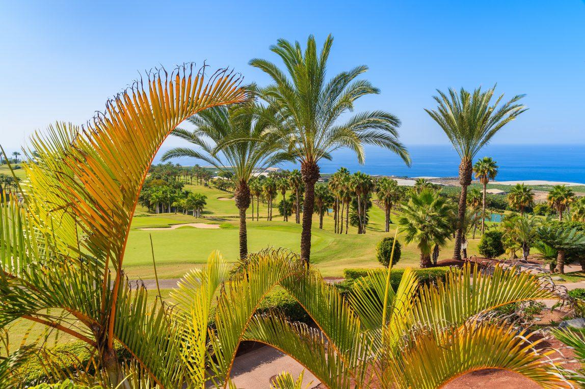 Espanja Kanariansaaret Teneriffa golfkenttä