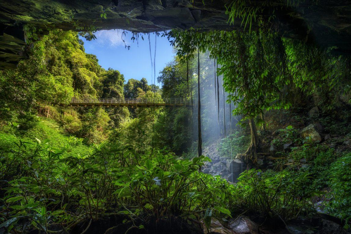 Australia sademetsä