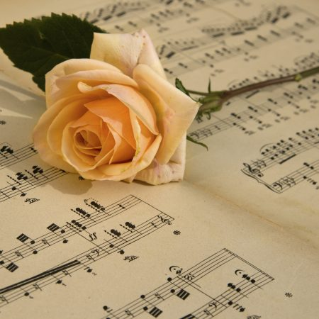 Matkateema ooppera ruusu