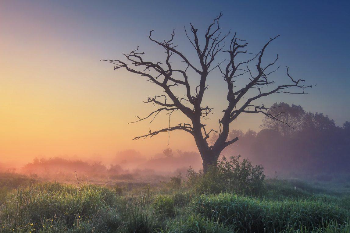 Zimbabwe auringonnousu