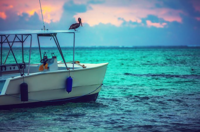 Dominikaaninen tasavalta Punta Cana vene