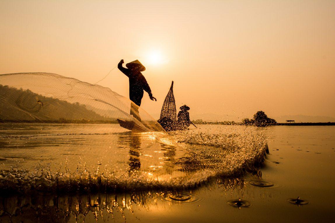Kamboza kalastusta